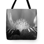 Miniature Tall Bearded Iris Named Consummation Tote Bag