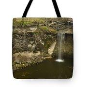 Minneopa Falls 39 Tote Bag