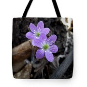 Minnesota Spring Wildflower Tote Bag