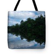 Mirror Image Tote Bag