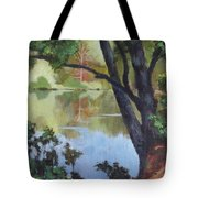 Mirror Reflection Tote Bag