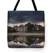 Mirrored Trees Tote Bag