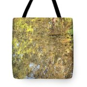 Mirroring Autumn Tote Bag