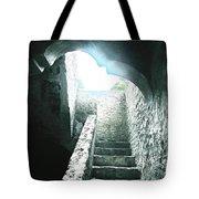 Mission Concepcion San Antonio Tote Bag