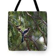 Mississippi Blue Jay Tote Bag