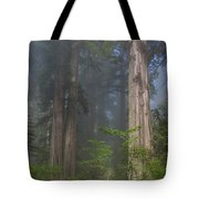 Mists Rising From Lady Bird Johnson Grove Tote Bag