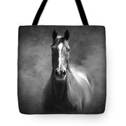 Misty In The Moonlight Bw Tote Bag