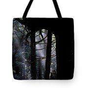 Misty Light At Second Beach Tote Bag