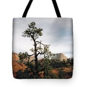 Misty Morning In Zion Canyon Tote Bag