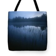 Misty View Of Taiga Forest Tote Bag