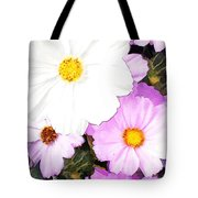 Mixed Pink And White Cosmos Tote Bag