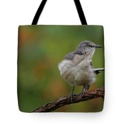 Mocking Bird Perched In The Wind Tote Bag