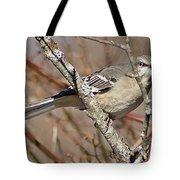 Mockingbird II Tote Bag