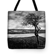 Moisonnerie Bw Tote Bag