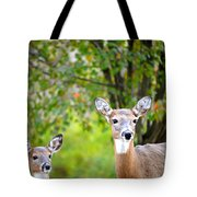 Mom And Baby Deer Tote Bag