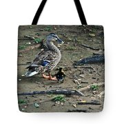 Mom And Duckling Tote Bag