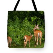 Mom And Two Tote Bag