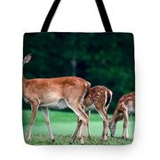 Mom With Twins Tote Bag