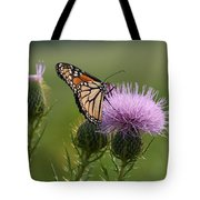 Monarch Butterfly On Bull Thistle Wildflowers Tote Bag