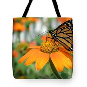 Monarch Butterfly On Tithonia Flower Tote Bag