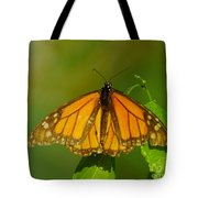 Monarch On Hackberry Tote Bag