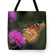 Monarch On Thistle 13f Tote Bag
