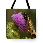 Monarch On Thistle 2 Tote Bag