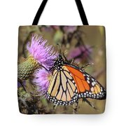Monarch On Thistle II Tote Bag