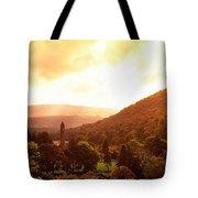 Monastic Site, Glendalough, Co Wicklow Tote Bag