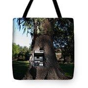 Money Tree . 7d9817 Tote Bag