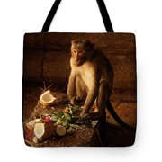 Monkey And Coconut Tote Bag