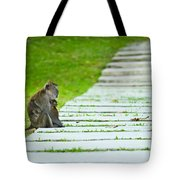 Monkey Mother With Baby Resting On A Walkway Tote Bag