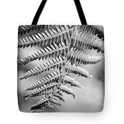 Monochrome Fern Frond Tote Bag