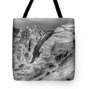 Monochrome Landscape Project 4 Tote Bag