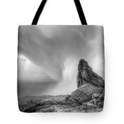 Monochrome Landscape Project 5 Tote Bag