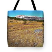 Montana100 0885  Tote Bag