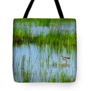 Montezuma National Wildlife Refuge Tote Bag