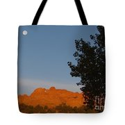 Moon Above Kissing Camels Tote Bag