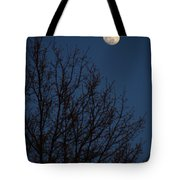 Moon And Trees Tote Bag