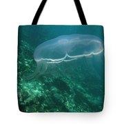 Moon Jelly Fringe Tote Bag