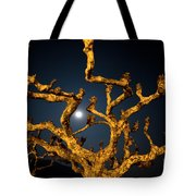 Moon Light And Tree Tote Bag