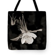 Moonlight Columbine Tote Bag
