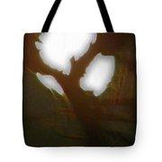 Moonlight Thru Pecans Tote Bag