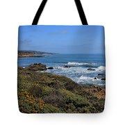 Moonstone Beach Tote Bag by Heidi Smith