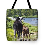 Moose Ends Baxter State Park Maine Tote Bag