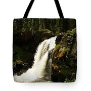 Moose Falls Tote Bag