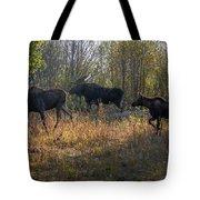 Moose Family Tote Bag