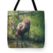 Moose Is Loose Tote Bag