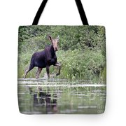 Moose On The Move Tote Bag