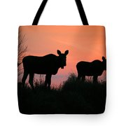 Moose Silhouetted At Sunset Tote Bag